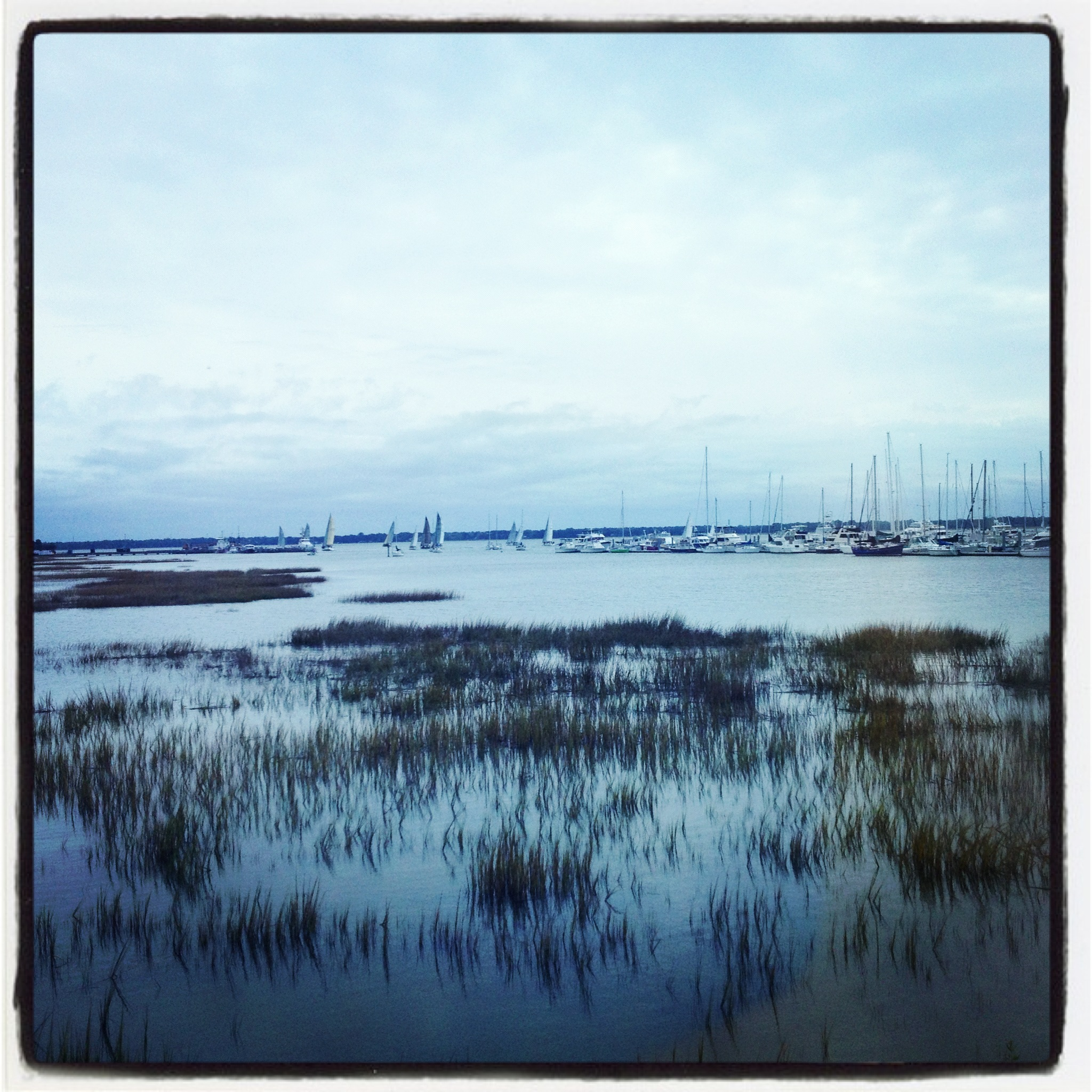 charleston-city-marina-south-carolina.jpg